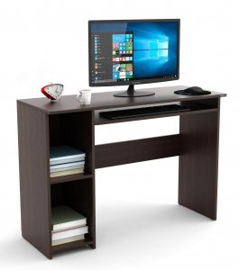 Bluewud Computer Desk for Gaming and Home
